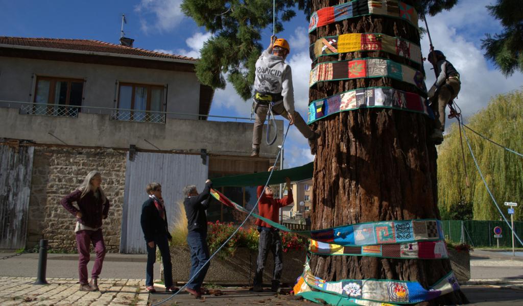 L'installation d'une banderole textile de 60m sur le grand séquoia de Pélussin. © Catherine Robert