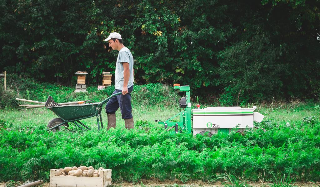 La société toulousaine Naïo conçoit des robots électriques désherbeurs à destination des agriculteurs. Une alternative « high-tech » à l'utilisation de pesticides. © Tien Tran / Naïo